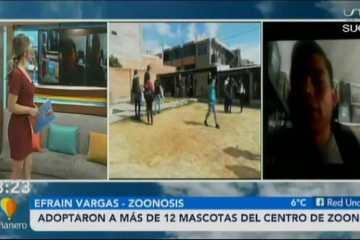 ADOPTARON A MÁS DE 12 MASCOTAS DEL CENTRO DE ZOONOSIS DE SUCRE