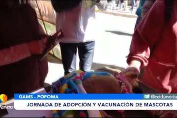 SEGUNDA JORNADA DE ADOPCIÓN Y VACUNACIÓN DE MASCOTAS