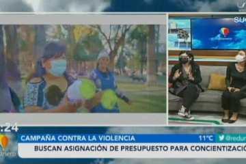 CAMPAÑA CONTRA LA VIOLENCIA: BUSCAN ASIGNACIÓN DE PRESUPUESTO PARA CONCIENTIZACIÓN
