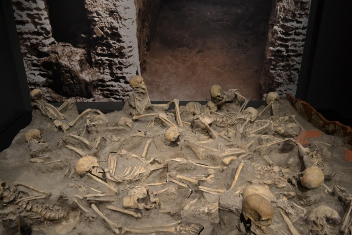 denver-museum-of-nature-and-science-a-day-in-pompeii-herculaneum-skeletons (1024x683)