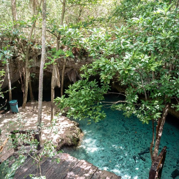 12 of the Best Cenotes in Yucatan Peninsula