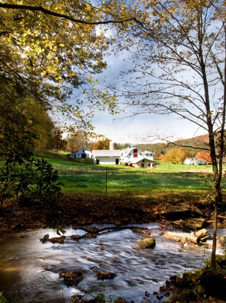 Reeb Ranch Barn and Creek