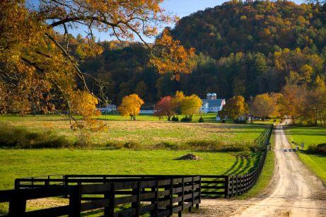 Shoal Falls Farm October views