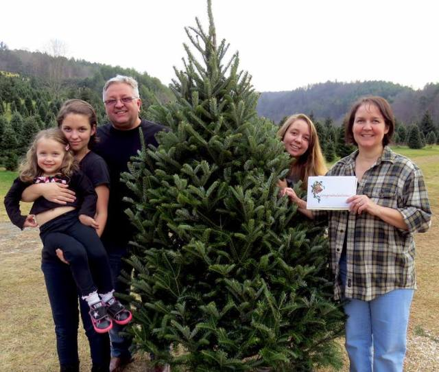 Winners Of The Free Tree For