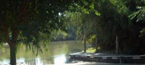 reedley_dock_065-268160337_std