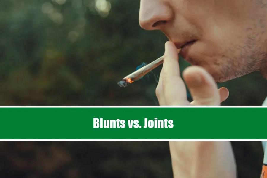blunt vs joint