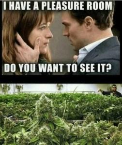 Cool weed meme 6