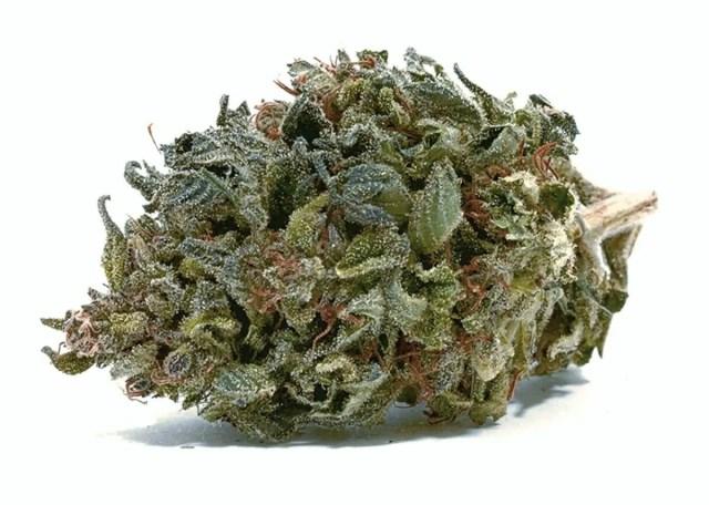 Cannabis ACDC Nug
