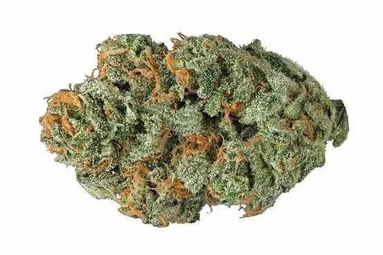 Cannabis Pennywise Bud