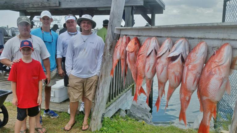 Reel Kill's been fishing a lot in the last two weeks. We have caught Red Snapper limits every trip and added Cobia, King Mackeral, Mahi, Scamp, White Snapper, Snowy Grouper, Red Grouper, and Barrel Fish to some of the longer trips. This is yesterday's Red Snapper 6 hour trip's catch.