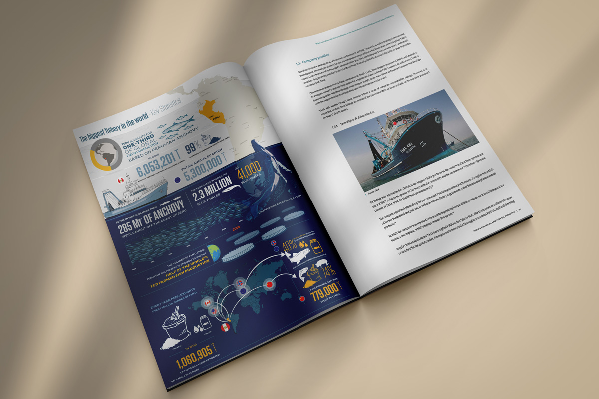 Pages from Fishing for catastrophe report