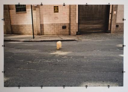 Ana María Ruiz De la serie Landscape Bags, 2011 Fotografía