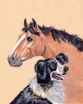 """J.Herriot """"Lood igasugu ilusatest ja imelistest loomadest"""" kaanepilt"""