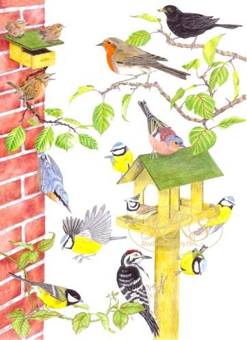 Linnuplakat