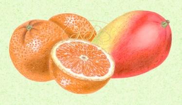 Apelsinid ja mango