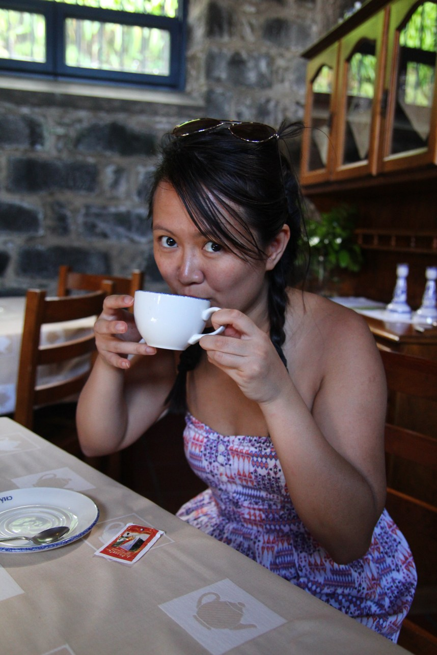 visiting tea plantations in the azores