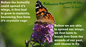 Releasing our Butterfly Wings