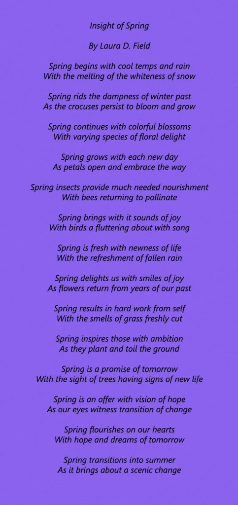 Insight Into Spring ~ By Laura D. Field ~