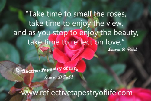 """Take time to smell the roses, take time to enjoy the view.   As you stop to enjoy the beauty, take time to reflect on love.""  ~ Laura D. Field ~"