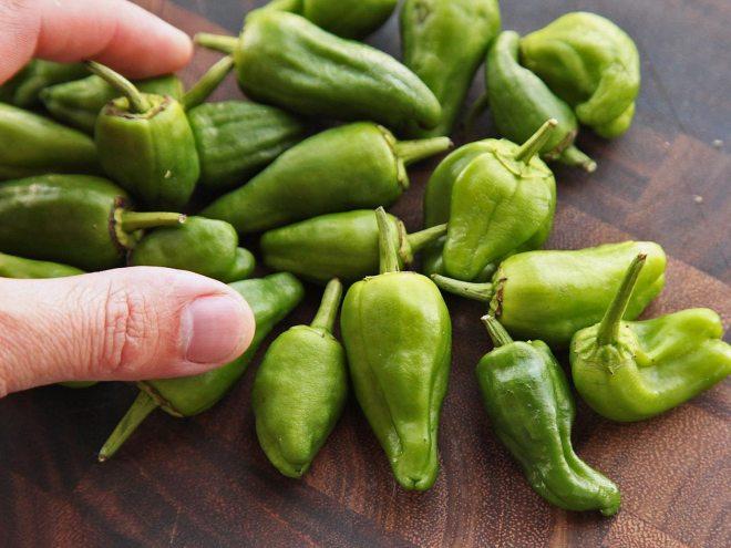 Pádron ligner grøn peber, men er blot mindre. De er efterhånden almindelige i de fleste grøntsagsafdelinger og gode til en hjemmelavet snack.