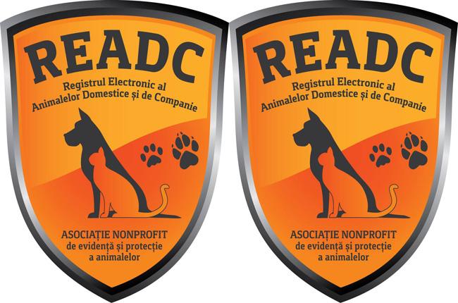 READC angajează P.R.