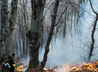 Incendiile de la Vidolm și Sălciua de Sus continuă – NU MAI INCENDIAȚI VEGETAȚIA