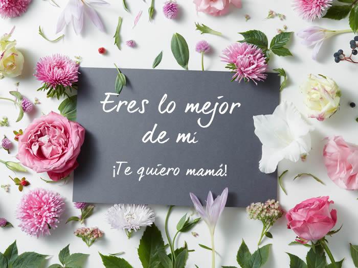 Imágenes Y Frases Para El Día De La Madre