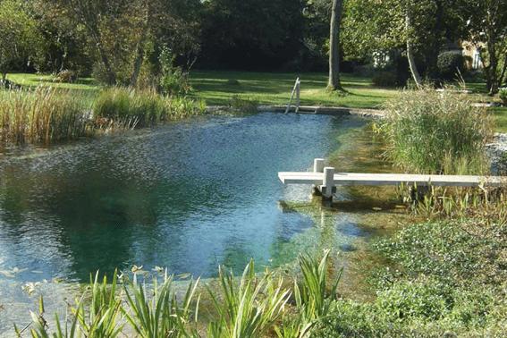 biopiscina con la zona de depuración con plantas separada de la zona del baño