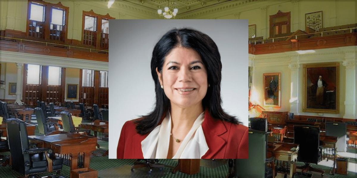 Alvarado Wins Special Election For Texas Senate