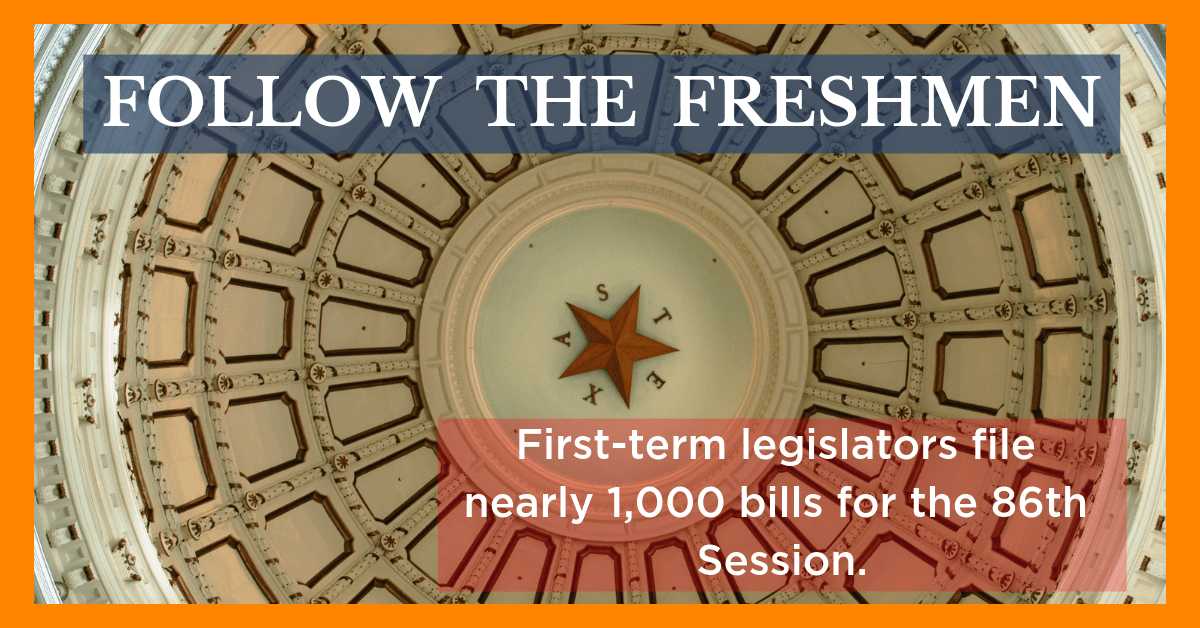 Follow the Freshmen: Nearly 1,000 Bills Filed By New Legislators