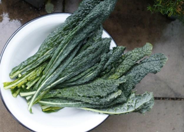 Schwarzer Kohl oder Tuscan Cale - gekauft im Bio-Supermarkt Basics