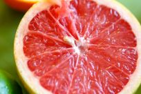 Lt. Christian Wilhelm Echter begünstigen Grapefruits die Aufnahme von Eisen und Folsäure