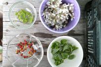 Blüten, Knospen, Blätter von Bäumen, Nachbarn von Moos - alles köstlich