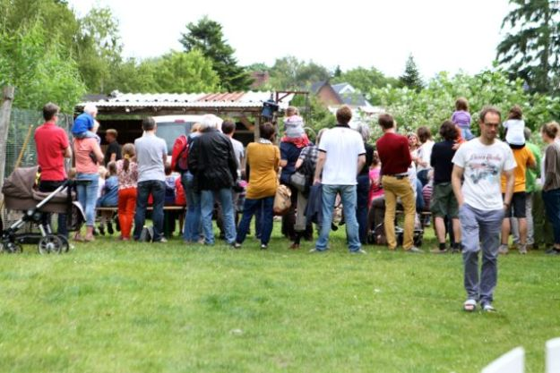 Gebanntes Publikum bei Scheren der neunköpfigen Schafherde