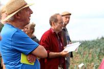 Fachkundig, solidarisch, entspann: Pflanzenzüchter und Erwerbsgärtner