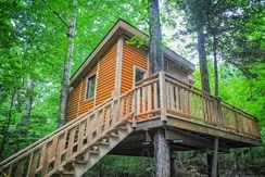 Treehouse 7