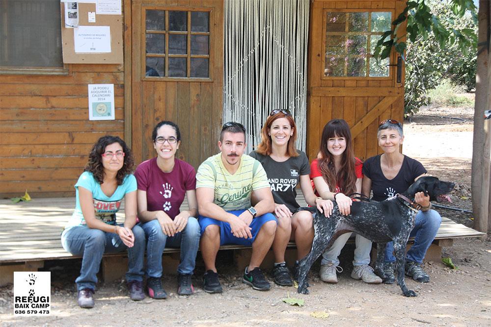 voluntarios-perros
