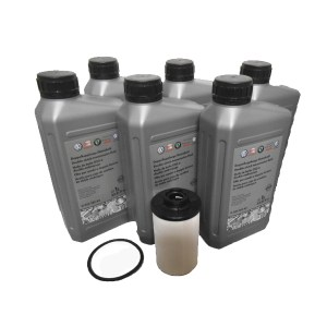 DSG filter and oil