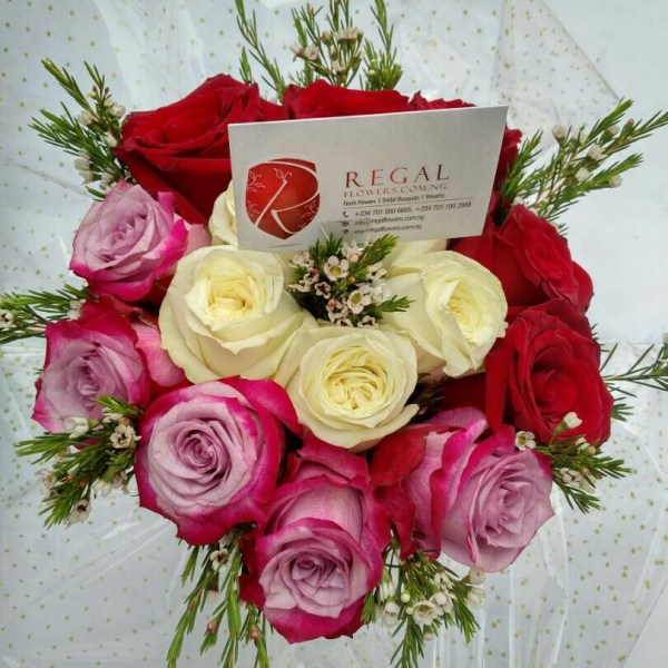 red purple and white roses