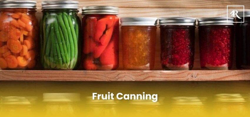 Fruit Canning business in pakistan