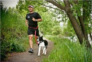 correa manos libres para trotar con tu perro