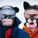 regalos originales para deportistas de invierno