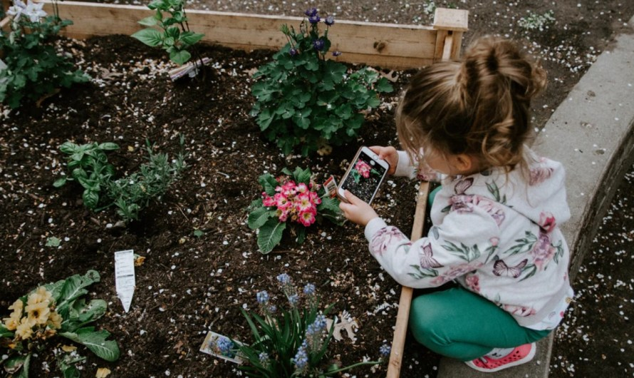 10 Best Gardening Apps for Android and iOS