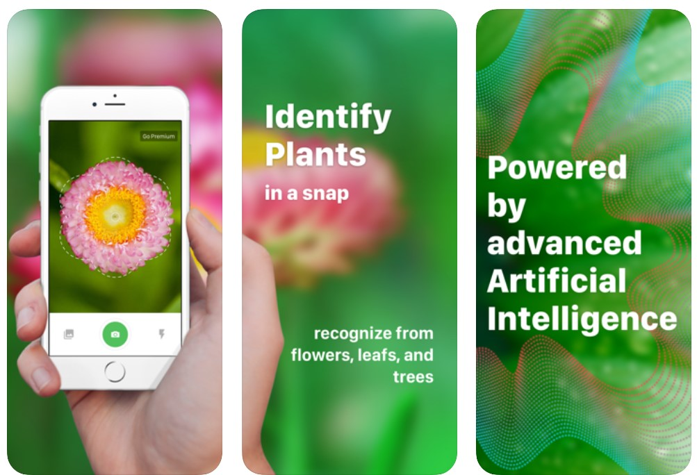 Plant Identification ++