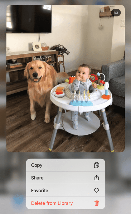 Tap image options and choose Copy Photo