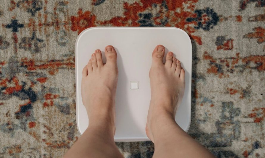 13 Best Apps for Gaining Weight for Android and iOS