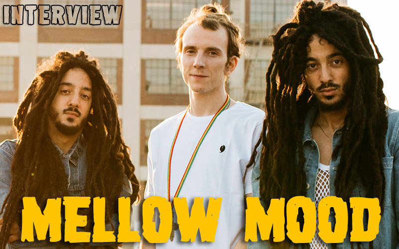 Mellow Mood - The Large Interview