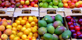 fruits les plus riches en vitamines