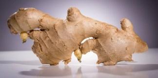 gingembre et perte de poids