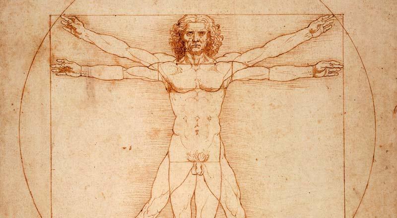 Homme de Vitruve par Leonard de Vinci